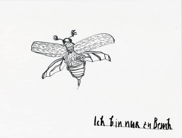 Faksimile »Ich bin nur zu Besuch.« Feder-Zeichnung Tusche Käfer Koleoptologie Maikäfer